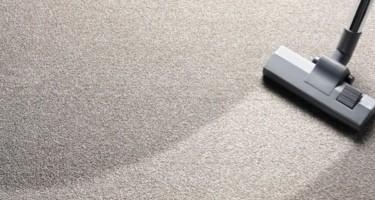 cleaning carpet   O'Krent Floors