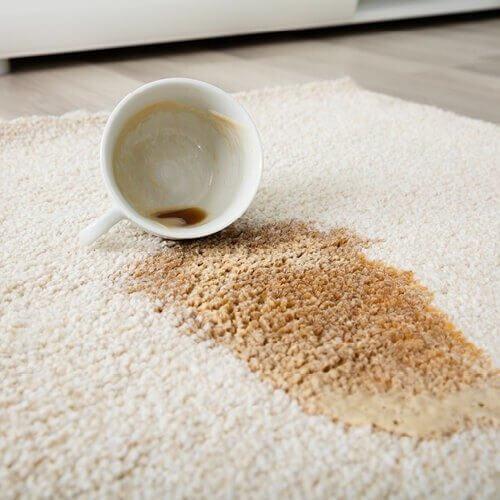 Carpet Stain cleaning   O'Krent Floors