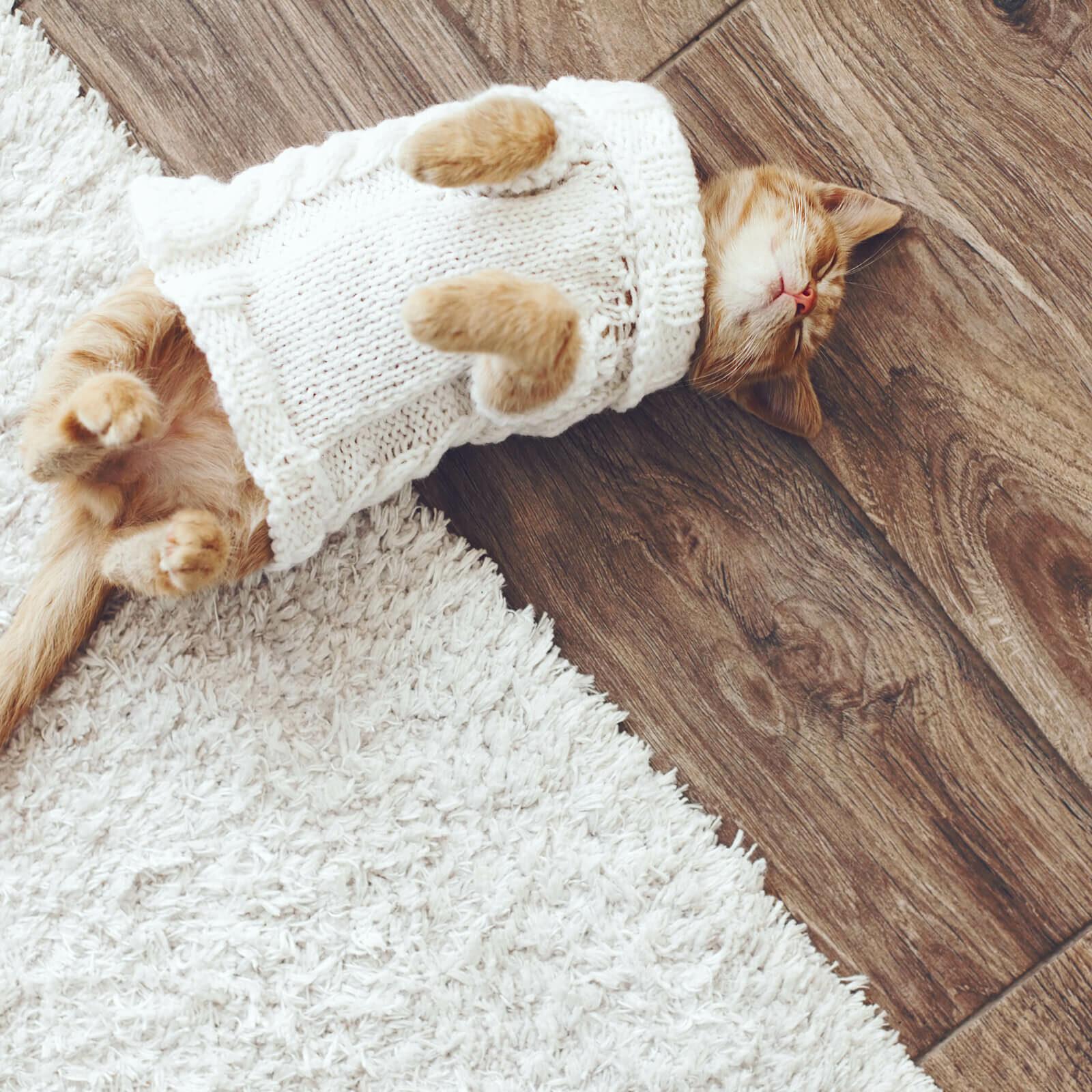 Hardwood Care & Maintenance   O'Krent Floors